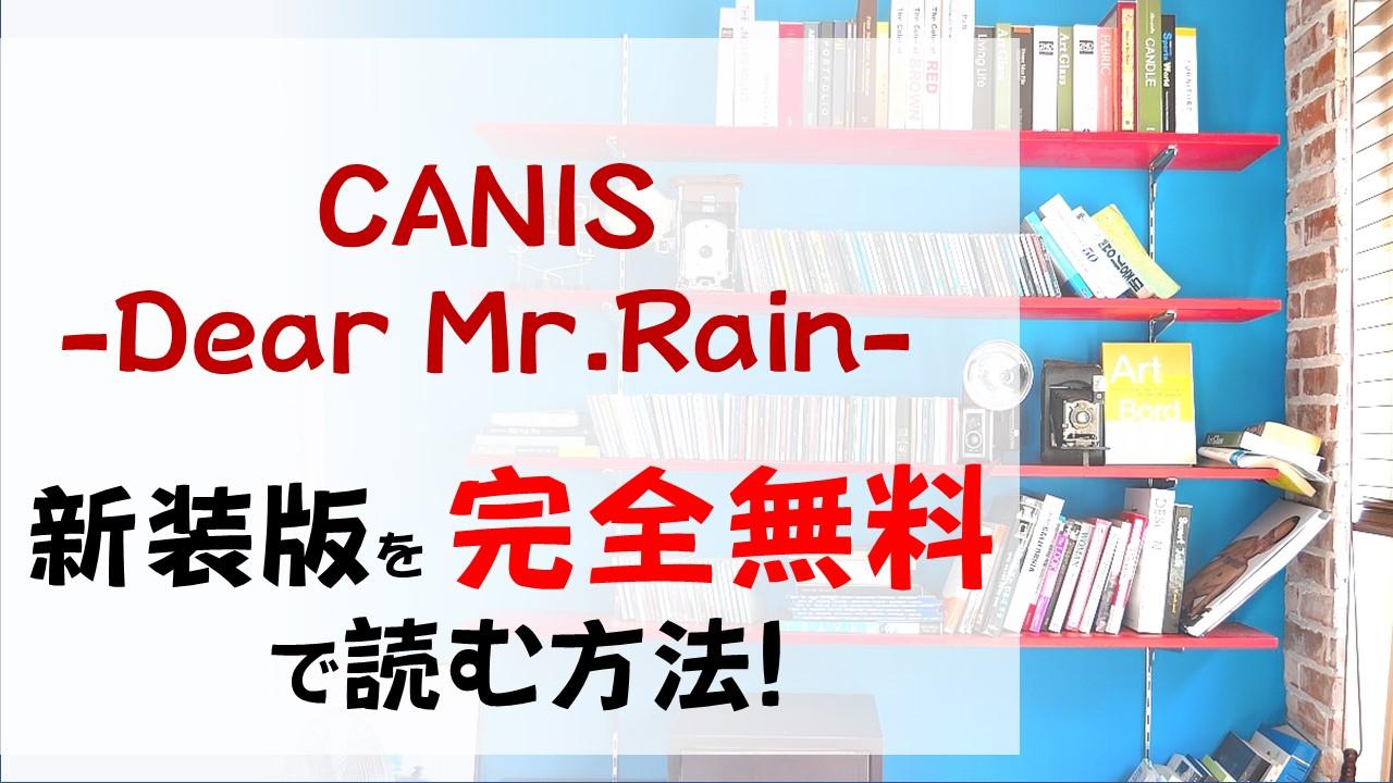 CANIS-Dear Mr.Rain-を無料で読む漫画バンクやraw・zipの代役はコレ!リョウのミステリアスさが癖になる!